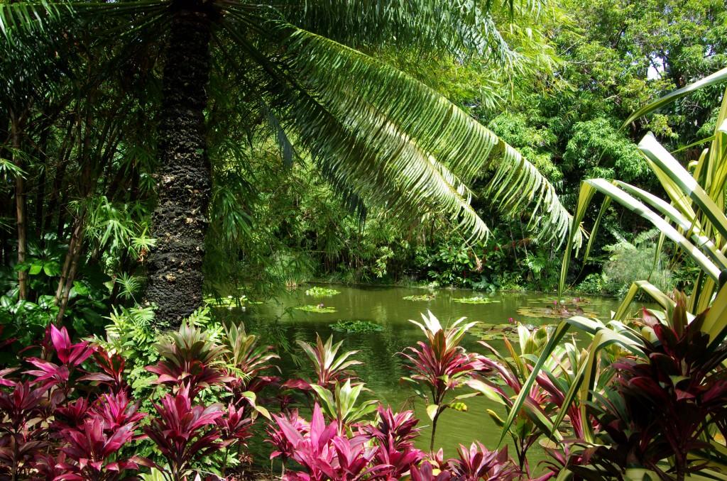 Jardin Coluche 3